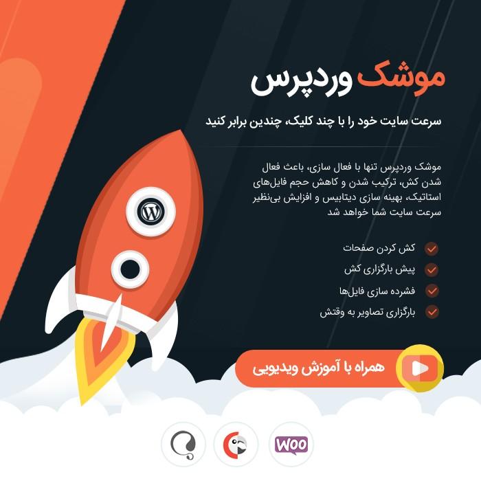 افزونه بهینه سازی و افزایش سرعت سایت وردپرس WP Rocket